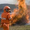Stato di grave pericolosità per incendi boschivi